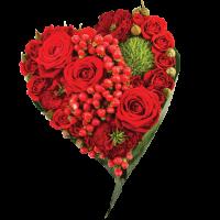 Voyance de l'amour - coeur rouge